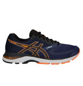 GEL-PULSE 10 GTX ASICS